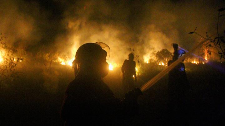 Пожарные Армении борются с огнем в Национальном парке Аревик