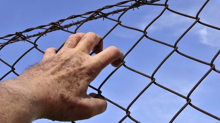 Латвия построила забор на границе, защищаясь от мигрантов