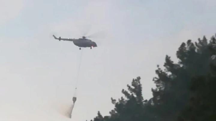 Под Геленджиком потушили лесной пожар на площади 3,7 га