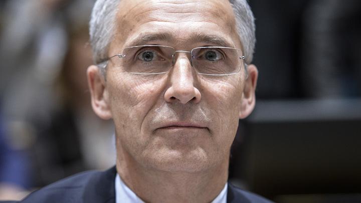 Еще не доросли: В НАТО указали Украине и Грузии на их место
