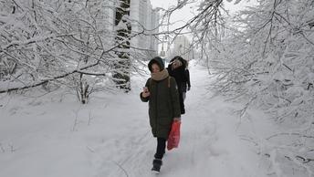 Москвичам обещали мягкое арктическое вторжение