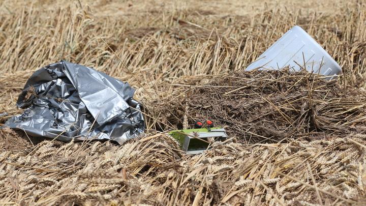 Дачники пожаловались на свалку отходов с птицефабрики под Новосибирском