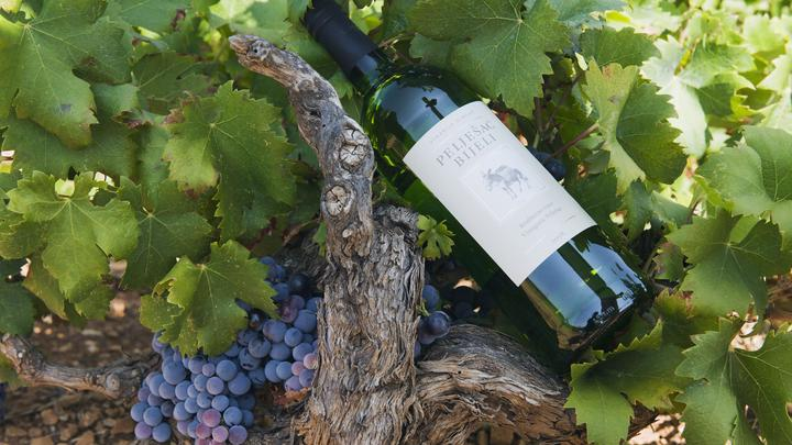 Реклама делает винные напитки дороже натуральных: Роскачество назвало отличия настоящего вина