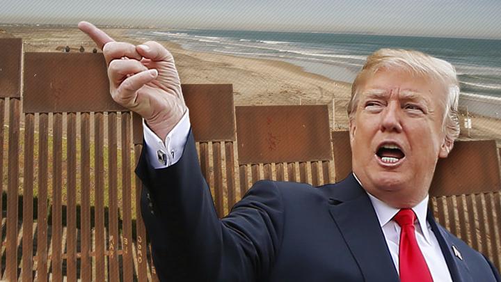 Трамп хочет выслать из США 12 миллионов человек