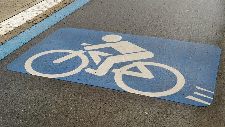 Петербургские автомобилисты требуют ликвидировать велодорожки в центре города