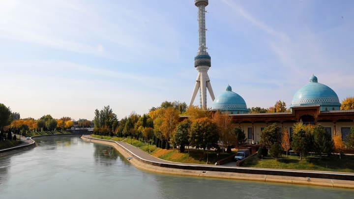 Нас держат за идиотов?: После репортажа из Узбекистана Стешин разнёс аргумент сторонников миграции