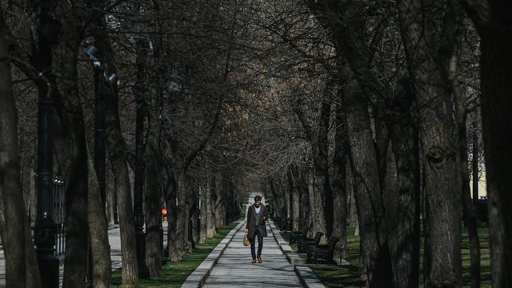 Больше 3 млн москвичей загулялись на полдня. Вскоре число заражённых подскочило до 1,3 тысячи в день