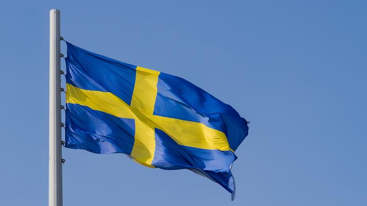 Почём нынче совесть?: Скандальный пранк с МИД Швеции подытожили тремя вопросами
