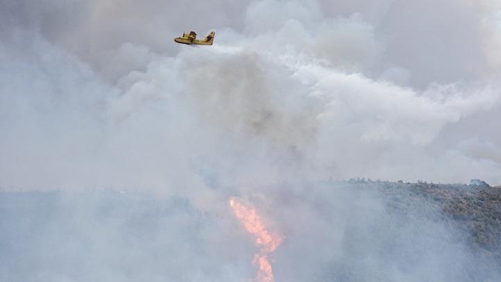 Минприроды хочет отнять у губернаторов право решать вопросы по лесным пожарам