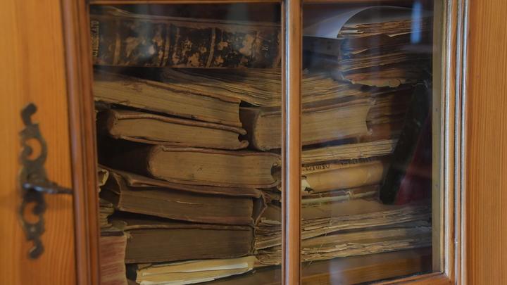 Эффект библиотеки: Учёные назвали количество книг для подъёма по социальной лестнице