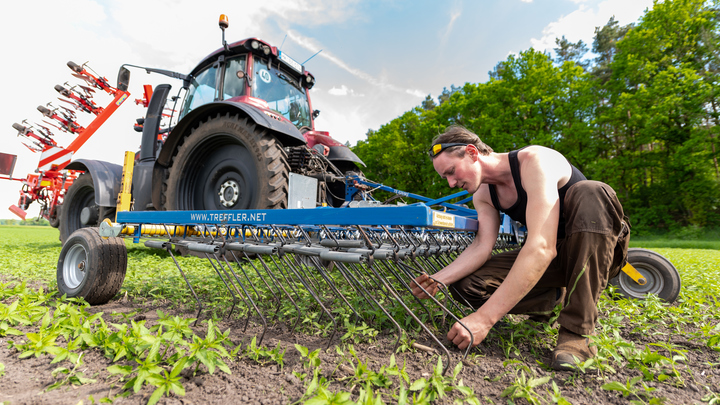 Новосибирский минсельхоз возьмёт на контроль заготовку кормов в районах области
