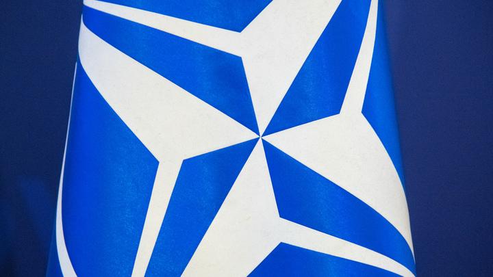 Подминают под себя: НАТО открывает в Киеве и Одессе курсы английского языка