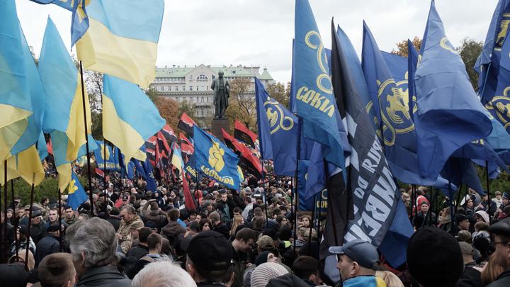 «Галичина» головного мозга: Украинские нацисты готовят акцию «Бессмертная дивизия»