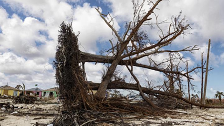 Ураганы разрушат США? Учёные заявили об усилении стихийных бедствий