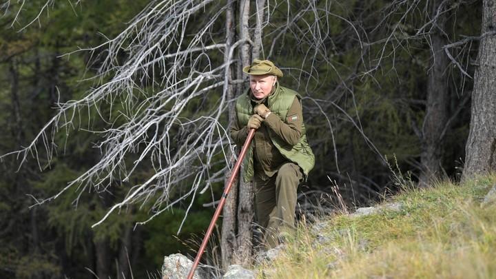 Шойгу в кадр не вошёл: Шнуров спародировал Владимира Путина, вернувшегося с отдыха в Сибири