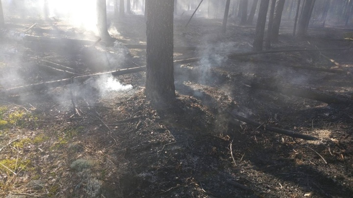 В Ивановской области ликвидировали два лесных пожара