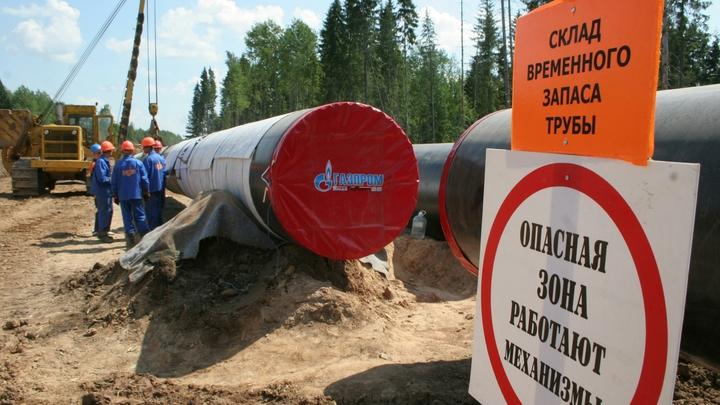 Сумма контрактов на строительство газопровода Сила Сибири выросла на 100 млрд рублей