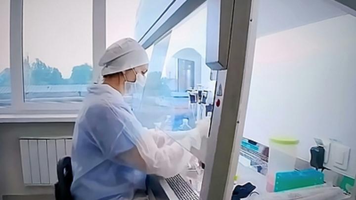 Движемся к выходу: случаи COVID-19 в Забайкалье выявляют все реже