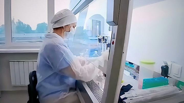 В России взрывной рост спроса на COVID-анализы: Лаборатории еле справляются