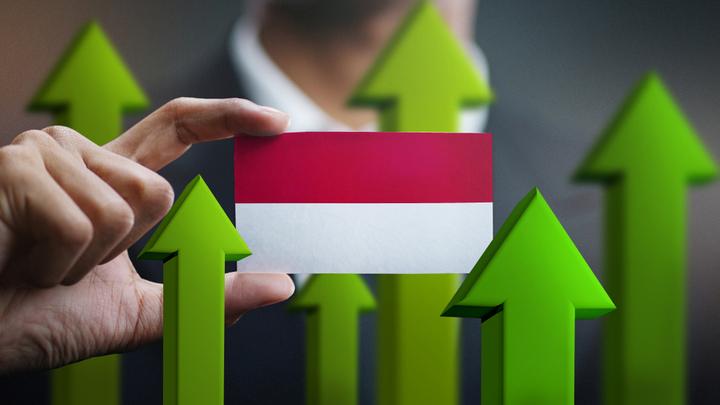 Институт экономики роста: К 2023 году нас обгонит даже Индонезия