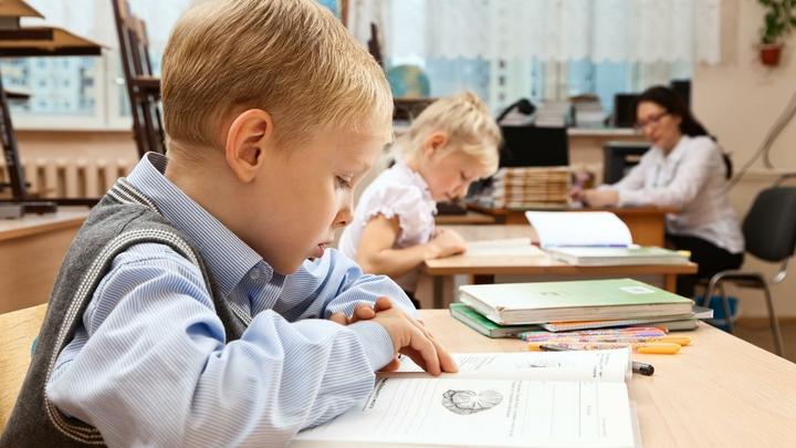Минобрнауки защитило школьные каникулы от вице-премьера Хлопонина