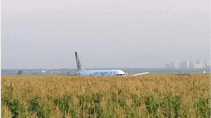 Севший в кукурузном поле А321 отправится за границу