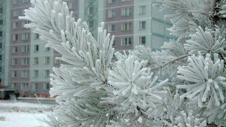 По ночам до минус 29: По регионам России ударят аномальные холода - синоптики
