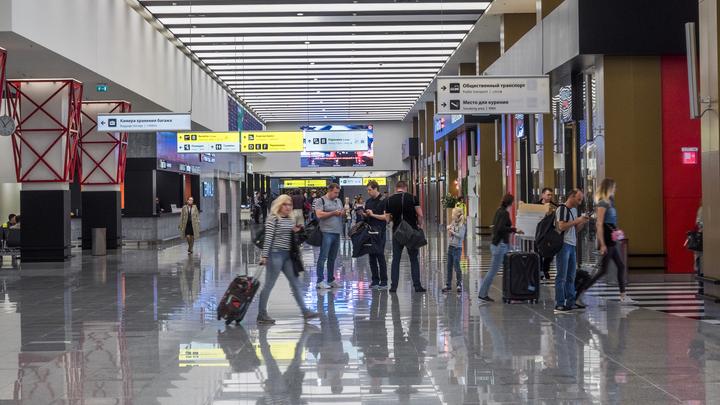 В московских аэропортах разрешили сидеть на полу, мыться и ездить верхом на животных