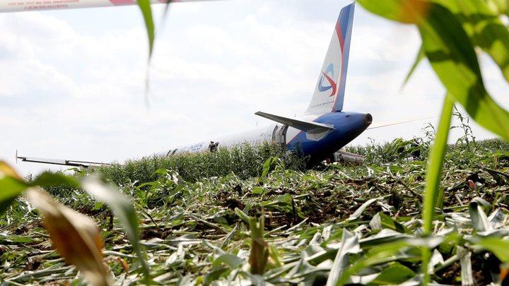 Выжившие в авиакатастрофе: О чём думают люди за минуту до смерти