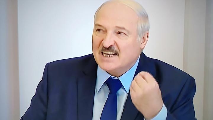Прикорытники и нацисты: Лукашенко о координационном совете белорусской оппозиции