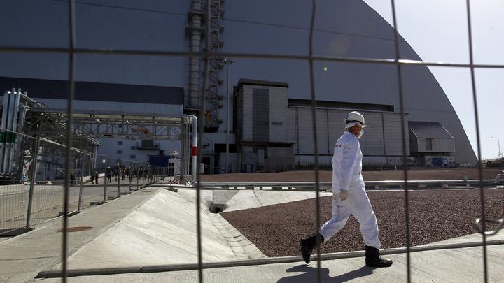 Водка в сухой закон, ЧП с вертолетом и мертвая живность: Ученые возмутились ошибками в Чернобыле
