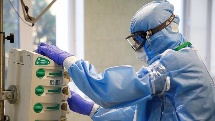 264 новых инфицированных: COVID-19 выявили в 31 муниципалитете Кубани
