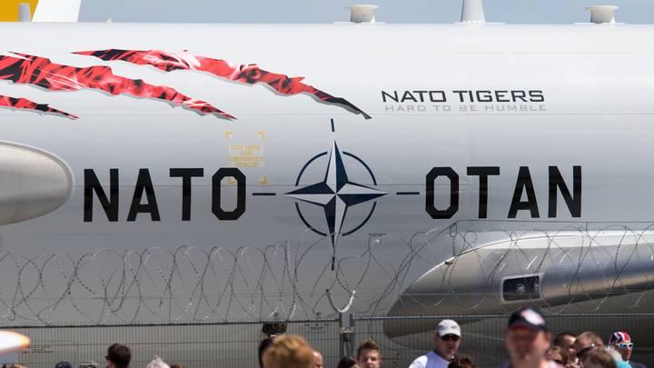 Грушко рассказал, как НАТО мешает прогрессу в Донбассе