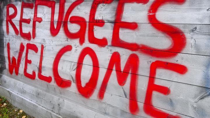 Мы затоплены, но не закрываем кран: В Европарламенте признали провал миграционной политики ЕС