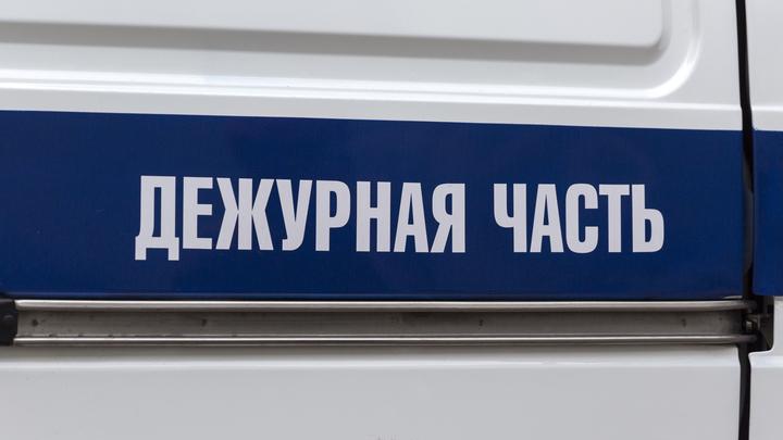 В Таганроге водитель разъезжал по городу с мертвой собакой на бампере