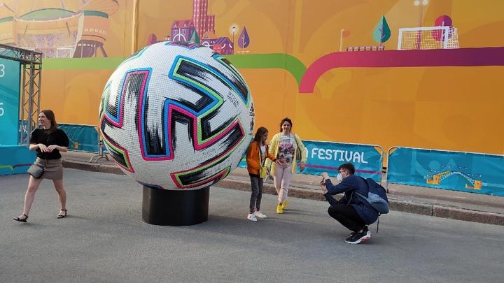 Прогнозы от усатого: Петербургский кот Ахилл предсказал результаты матча Евро 2020 Бельгии и России