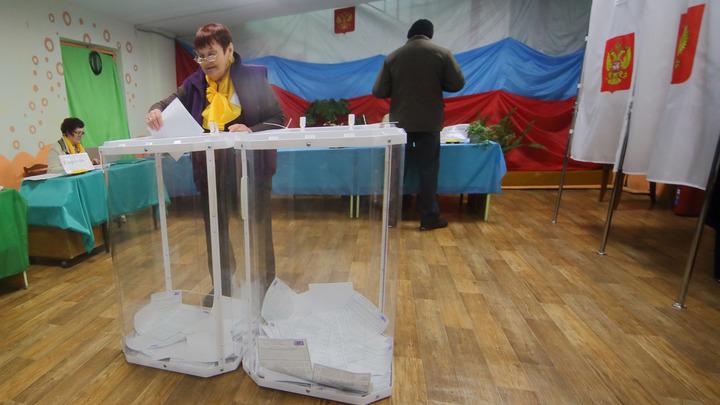 Выборы в Краснодаре 2021: три способа, как найти избирательный участок по адресу