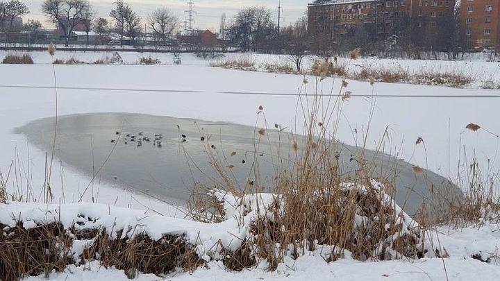 Жителей Краснодара просят не выходить на тонкий лед