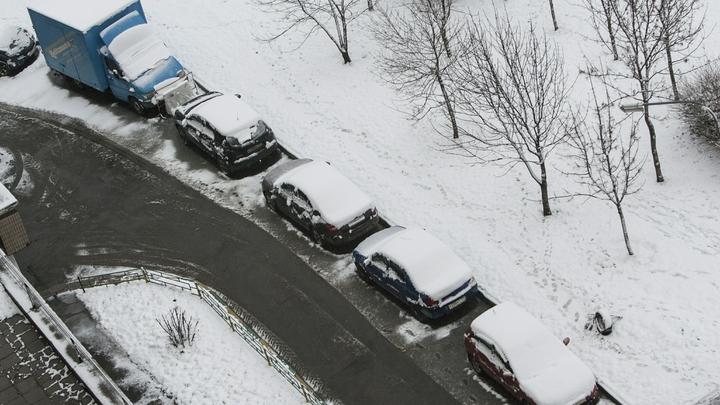 Московский регион ждут снежные выходные