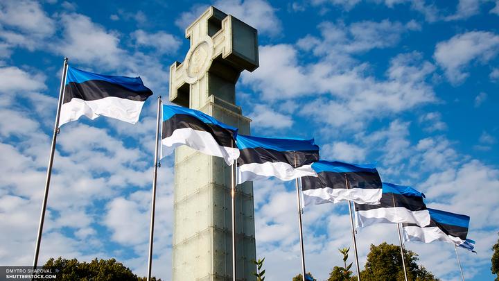Россия пообещала симметричный ответ на высылку дипломатов из Эстонии