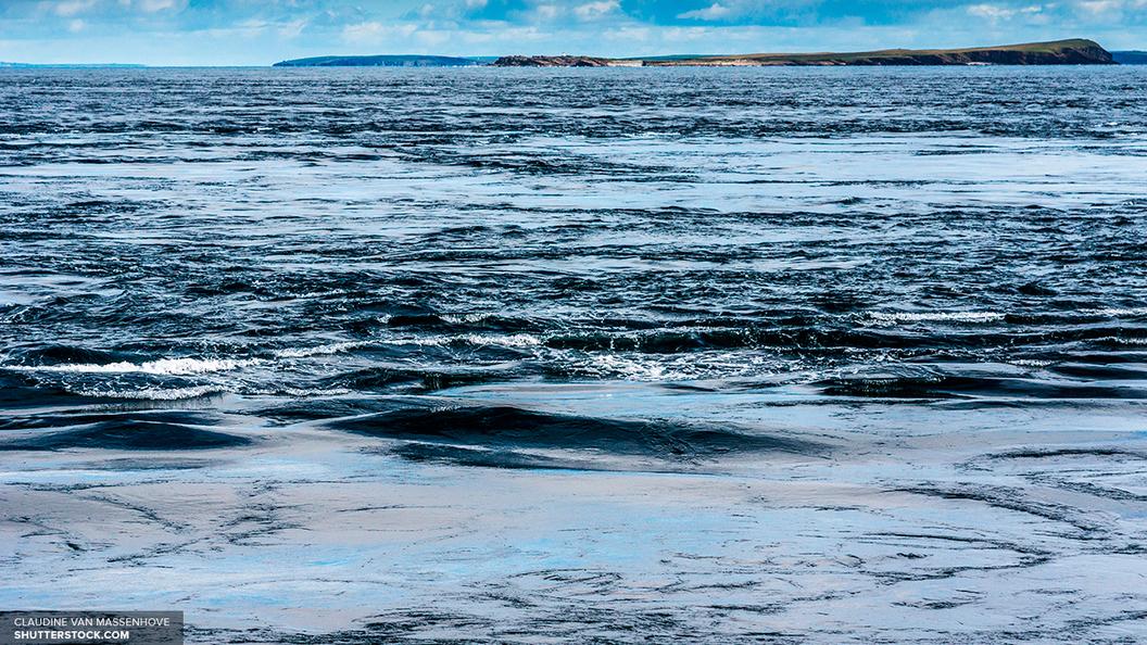 Роспотребнадзор назвал единственный чистый пляж Санкт-Петербурга