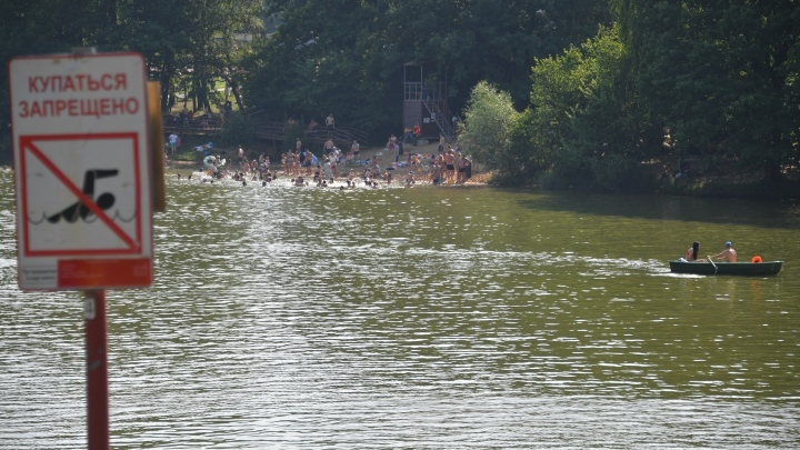 Женщина и мужчина утонули в деревенском пруду в Кузбассе