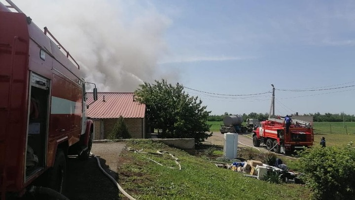 В Ростовской области горит крупная свиноферма