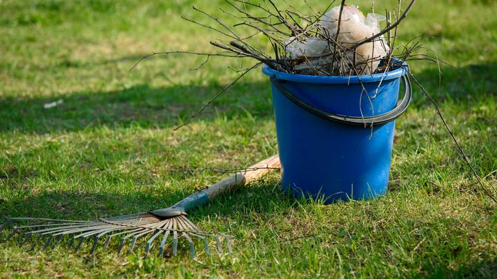 Весенняя уборка и летний отдых: Что делать с мусором на даче?