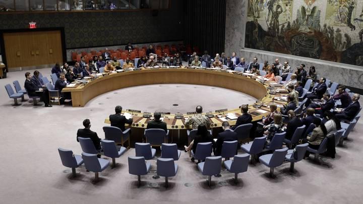Соблюдать не на словах, а на деле: Россия блокировала искажающее факты заявление Совбеза ООН по Сирии