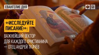 Исследуйте Писание: Важнейший вектор для каждого христианина — отец Андрей Ткачёв