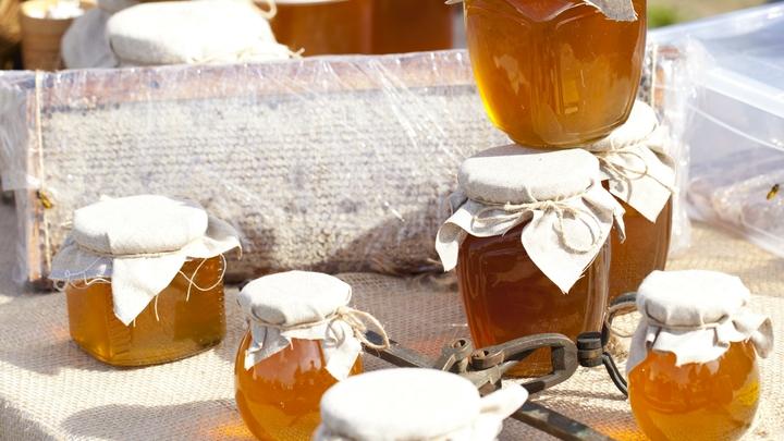 Российские специалисты нашли самый вкусный и натуральный мед