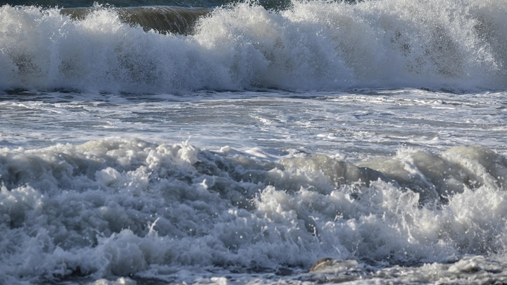 Дело не в трусах: Одесский пляж с Зеленским ужаснул пользователей Сети