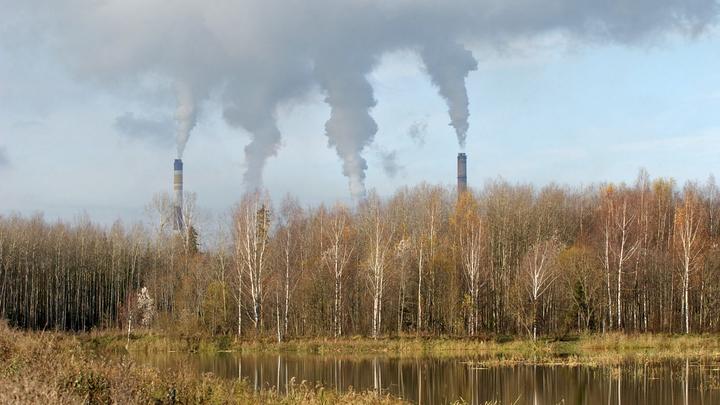 Не дышать, не размножаться, не развивать экономику? Ученые из 153 стран подписали инструкцию по спасению планеты
