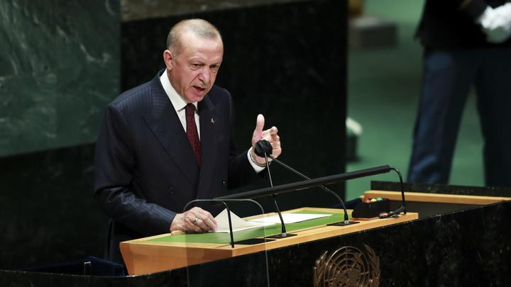 Что ждёт Эрдогана в Кремле после скандала с Крымом: Песков сделал заявление